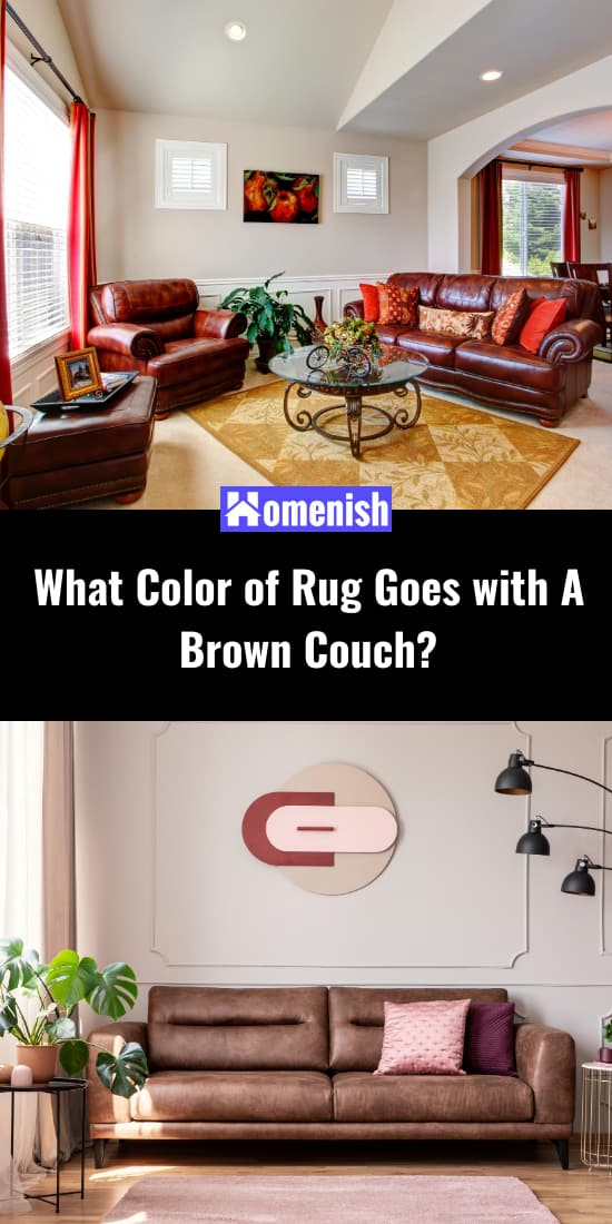 What Color of Rug Goes with A Brown Couch