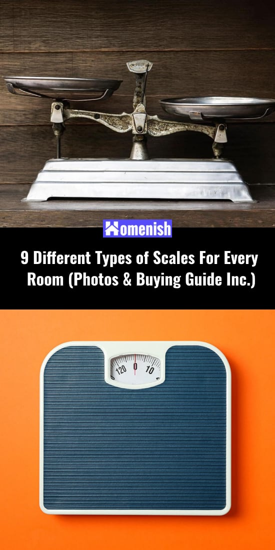 9 Different Types of Scales For Every Room