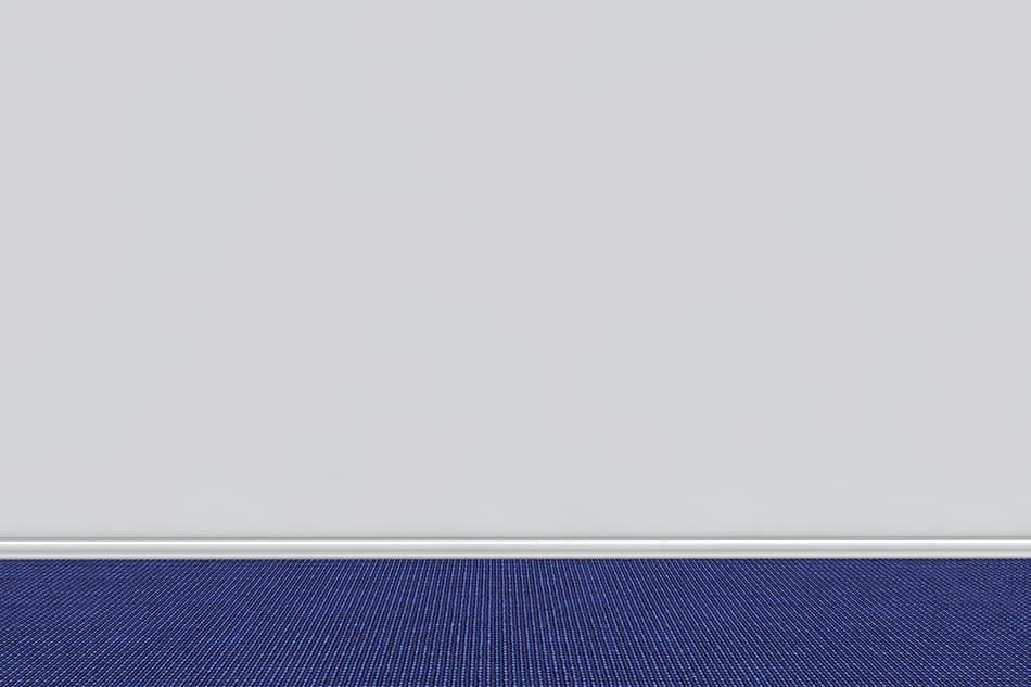 Blue Carpet for Light Gray Walls