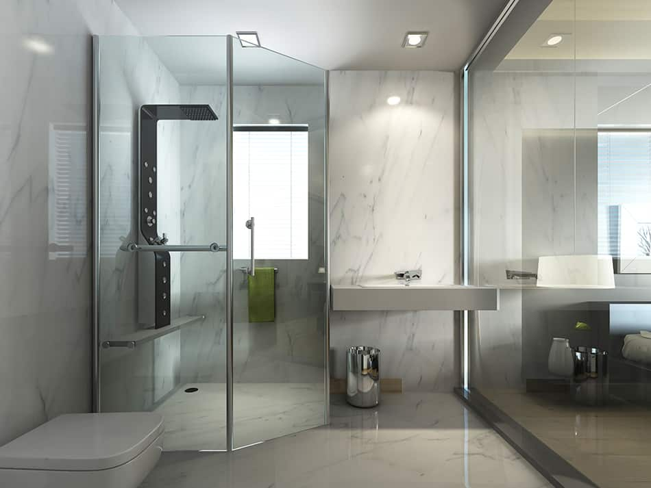 Fixed Shower Panels
