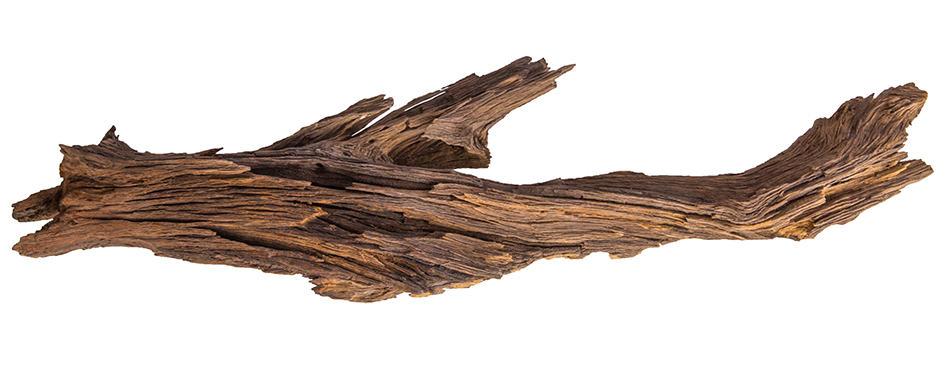 Ironwood or Lignum Vitae