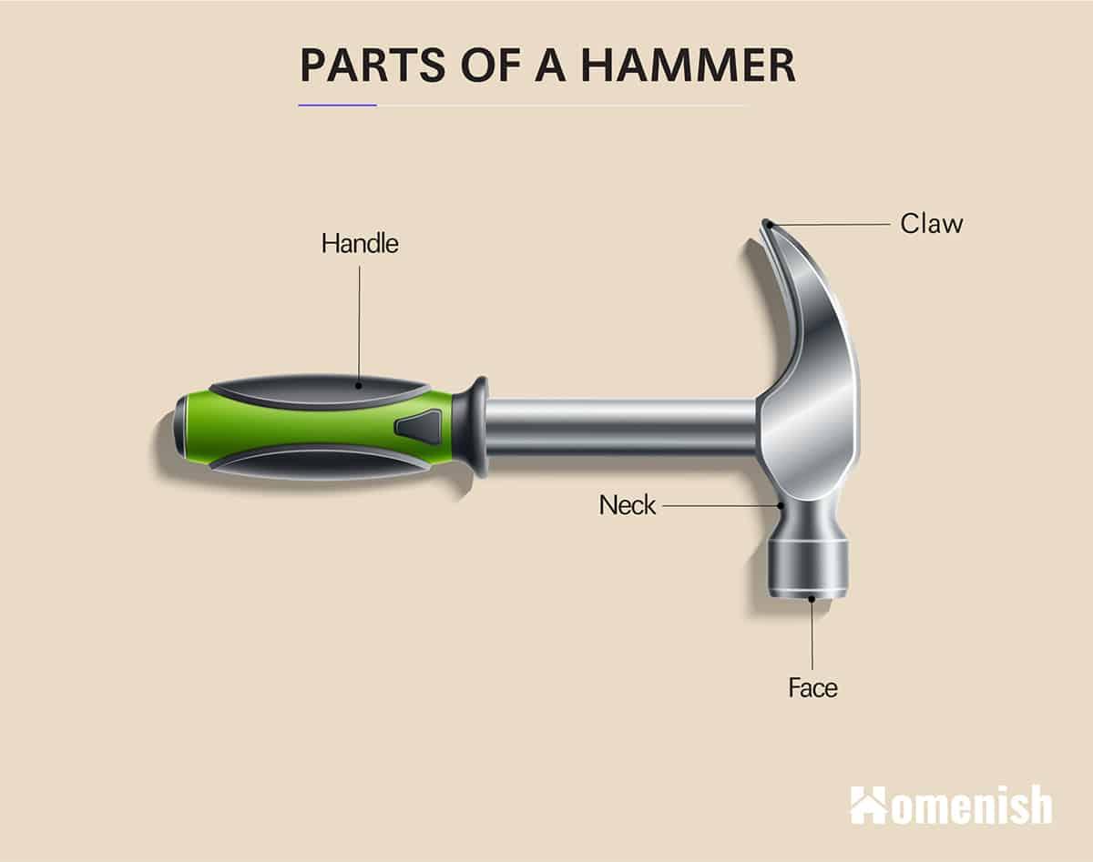 Parts of a Hammer Diagram