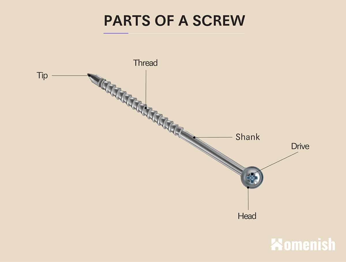 Parts of a Screw Diagram
