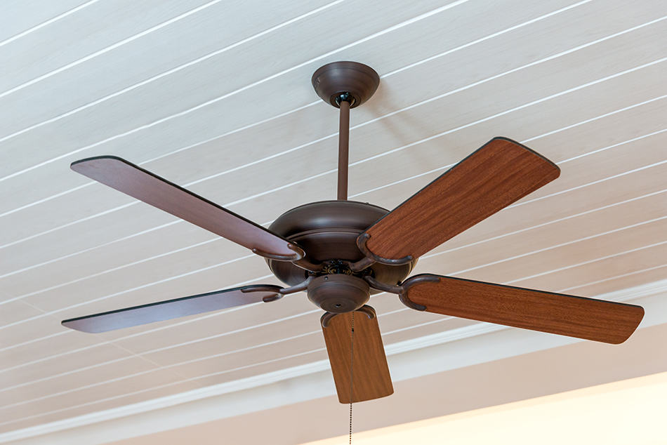 Wet and Damp Ceiling Fans