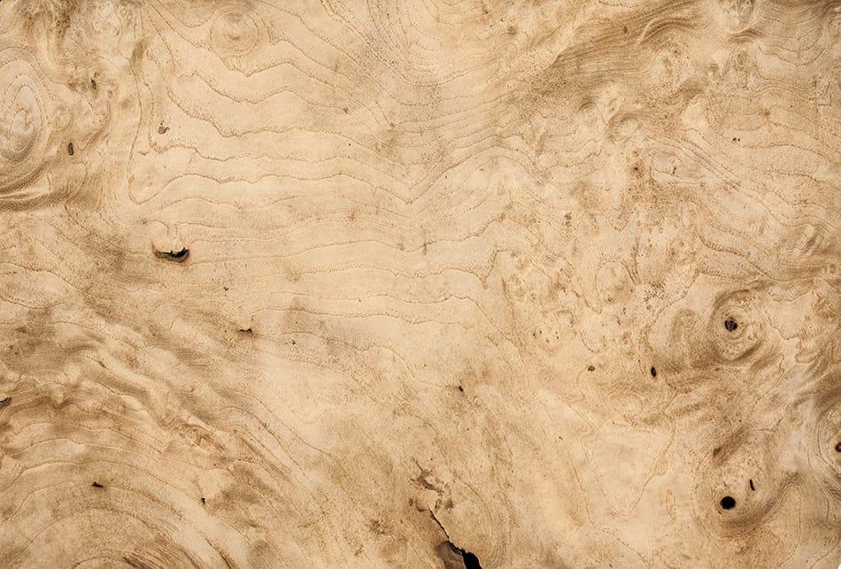 White Walnut Wood