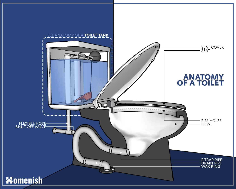 Partes del inodoro - Diagrama completo