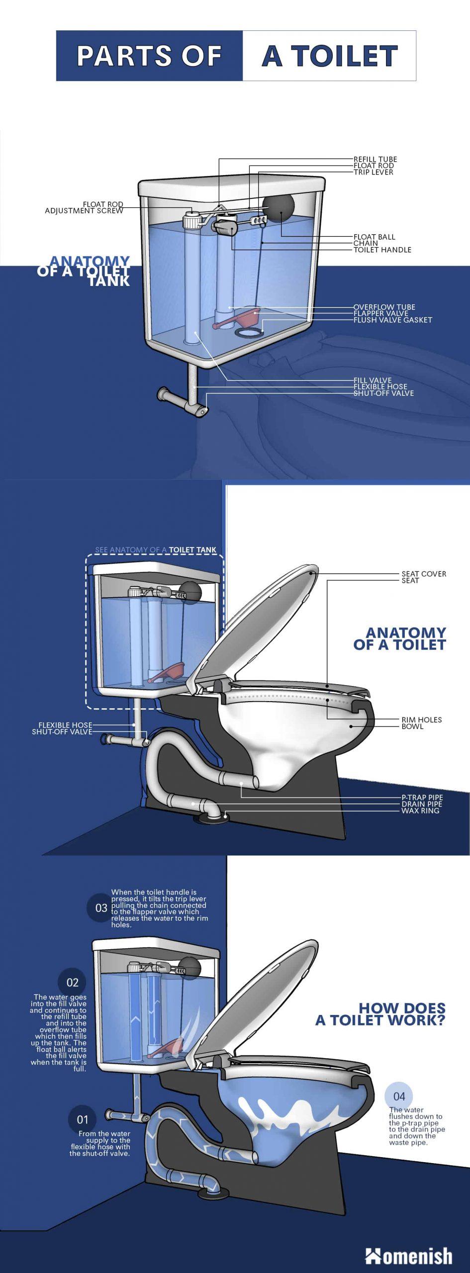Ilustración de piezas de inodoro infográficas