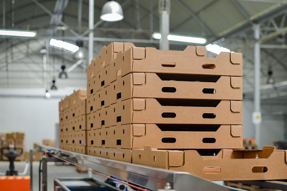 Corrugated Pallets