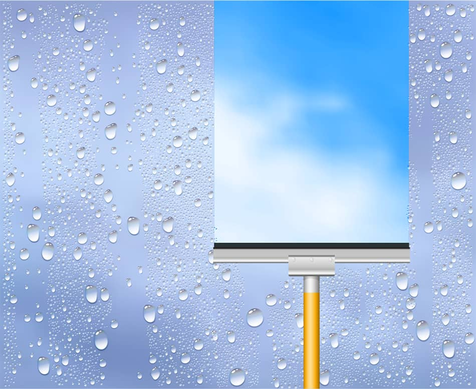 Squeegee for Daily Shine