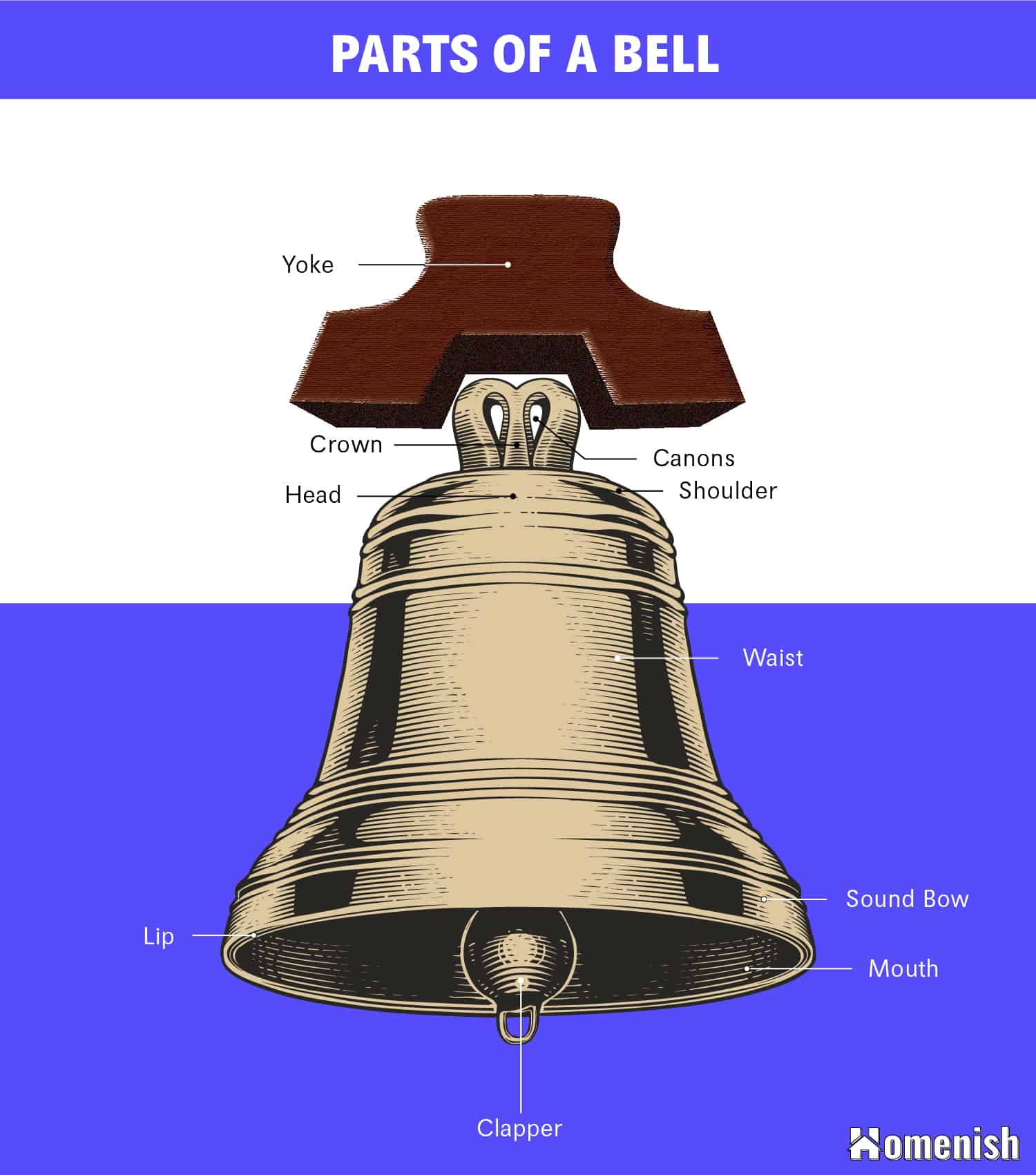 Parts of a Bell Diagram