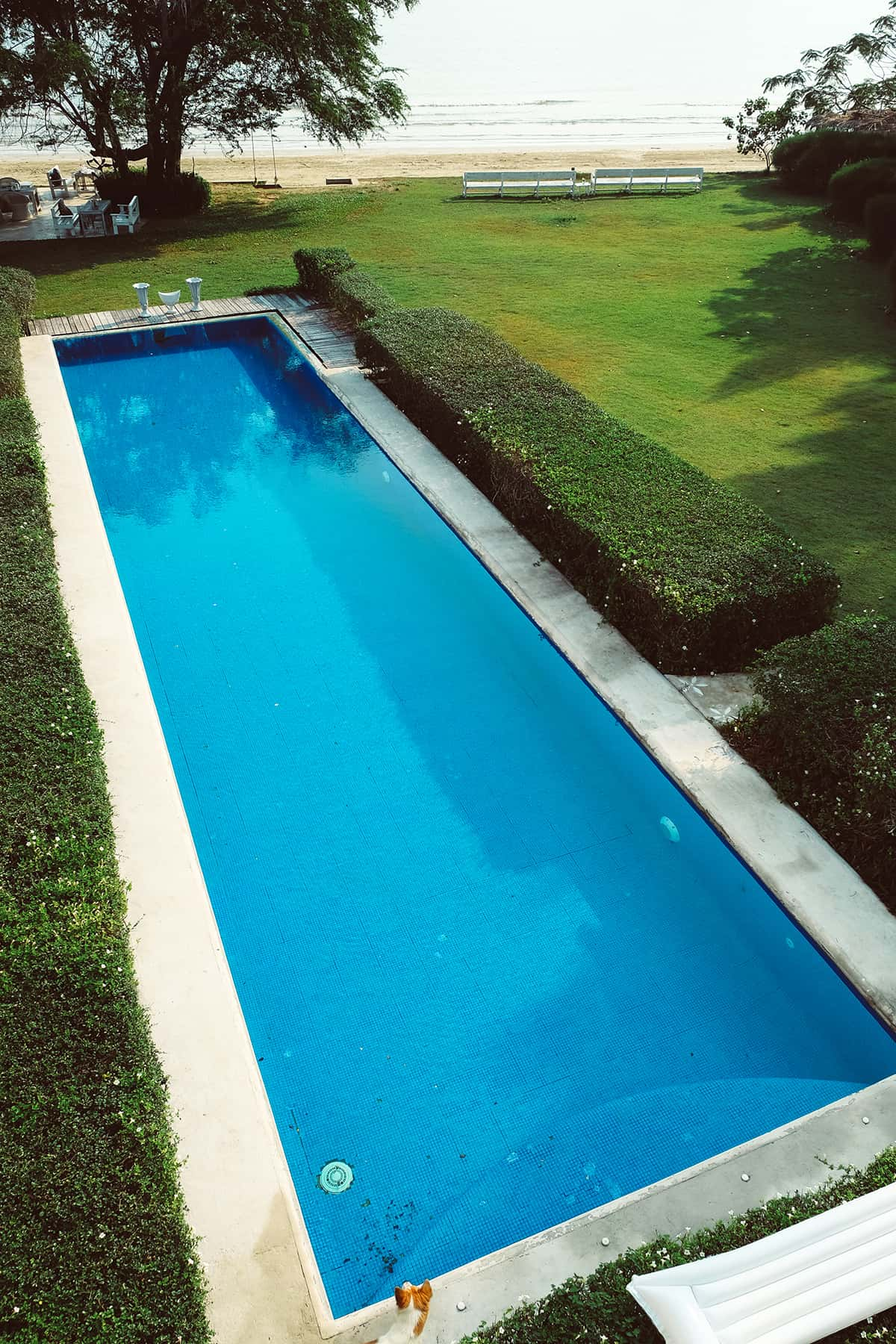 What is a Lap Pool?